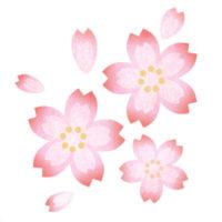 グラデーションの桜の無料イラスト