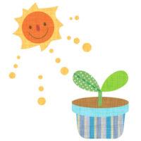 鉢植えの双葉に、にこにこお日様がふりそそいでいる無料イラストです。