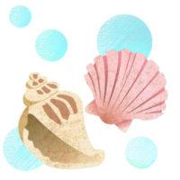 2種の貝殻のおしゃれな無料イラストです