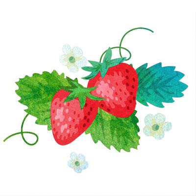 お花付きのおしゃれな苺のフリーイラストです