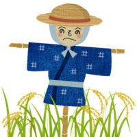 田んぼの中で麦藁帽をかぶった、へのへのもへじのかかしの無料イラストです。