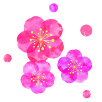 水彩風の梅の無料イラスト